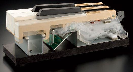 Roland PHA III - современная механика клавиатуры цифрового пианино